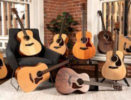 انواع-گیتار