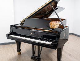piano arthoud